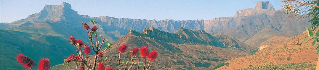 Drakensberg – Ekala Eco Tours